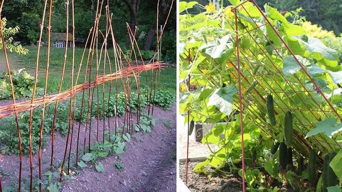 опоры для растений из пластиковых труб