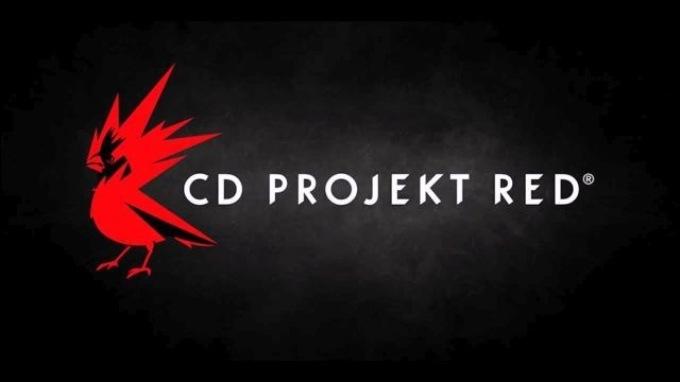 CD Projekt Red до конца 2021 года кроме Cyberpunk 2077 выпустит ещё одну ролевую игру