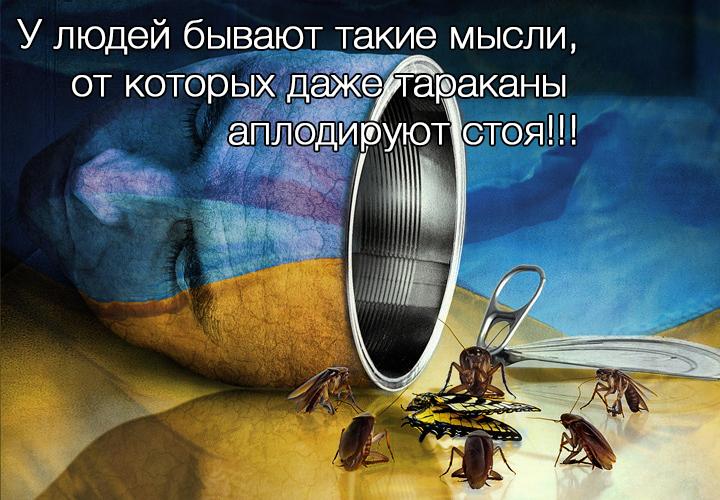 Украинцы, вы уже в полной Ев…