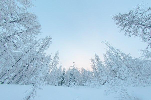 Хороша ты, русская зима!