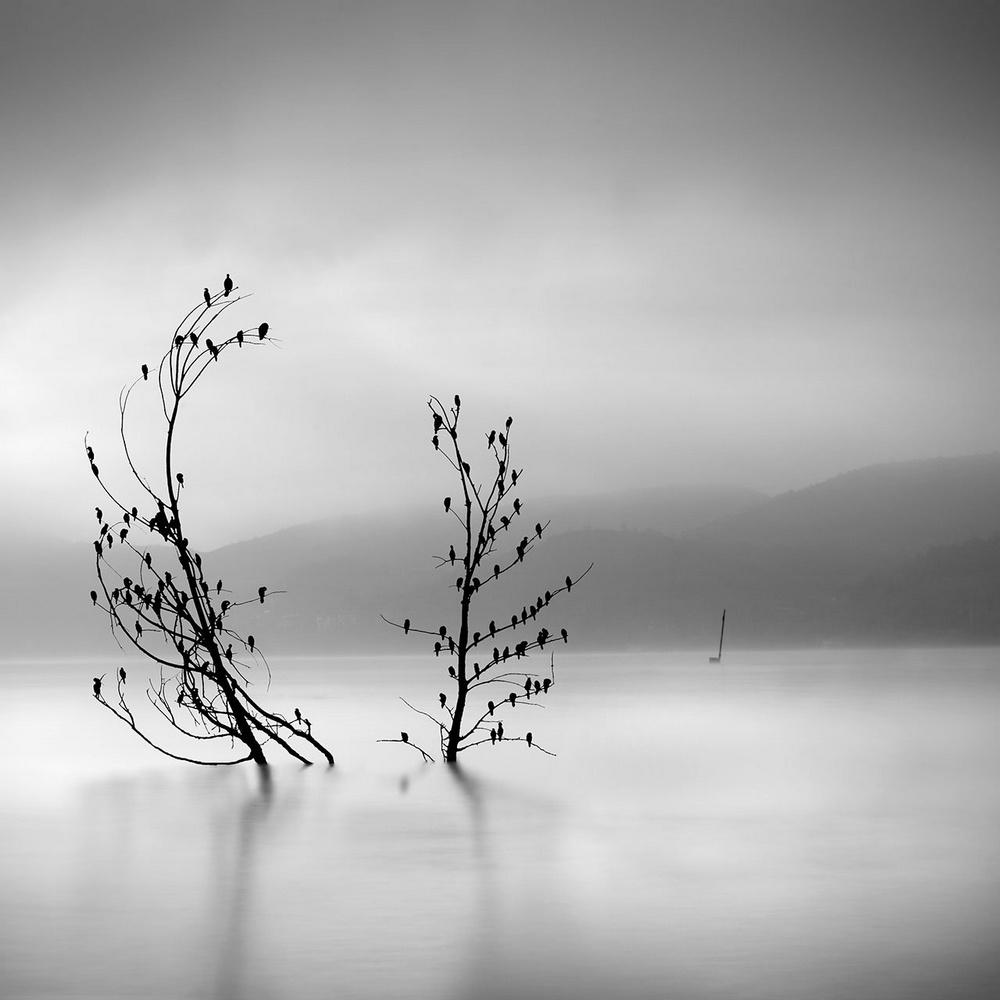 Чёрно-белые пейзажи, уходящие за пределы реальности. Фотограф Джордж Дигалакис 17