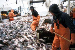 Рыба впереди мяса. Как российская еда завоёвывает мир