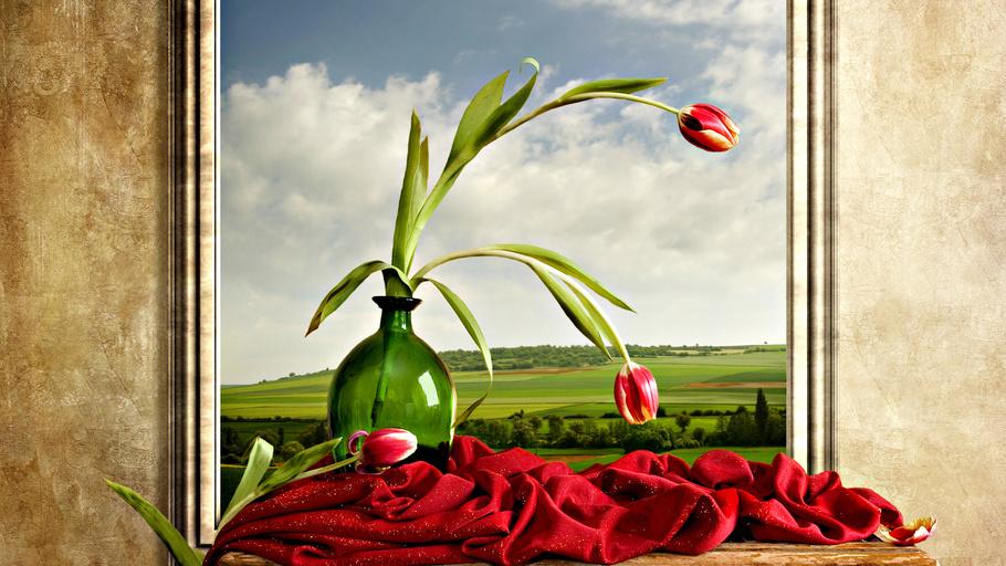 Природа, облаках, пейзаж, цветы, небо, тюльпаны