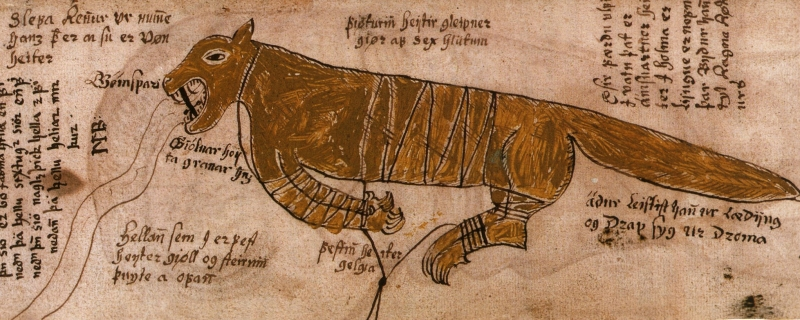 Иллюстрации средневековых бестиариев и манускриптов
