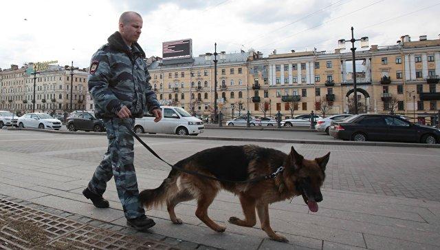В Петербурге обезвредили взрывное устройство в жилом доме