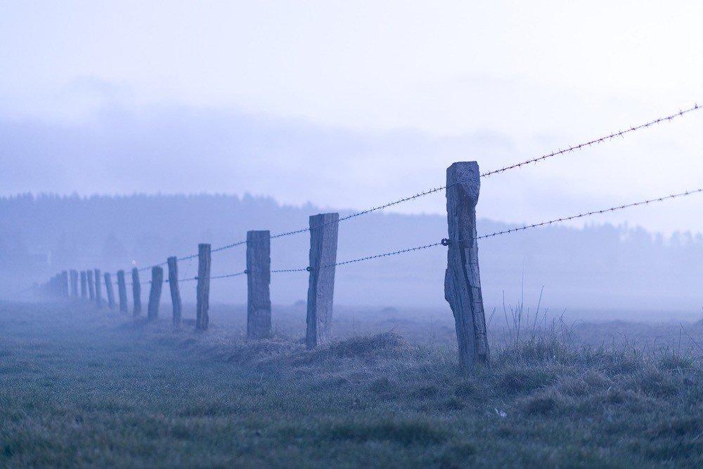 В Эстонии предложили разорвать соглашение о границе с РФ