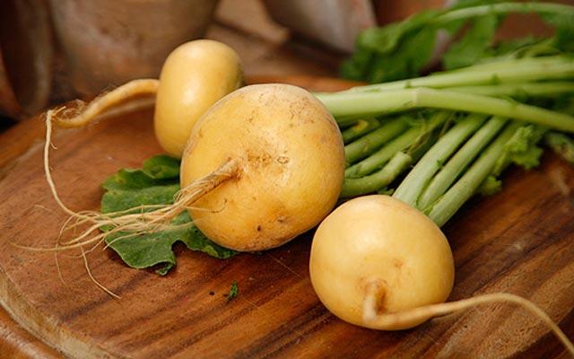 «Проще пареной репы» и другие интересные рецепты из забытого овоща