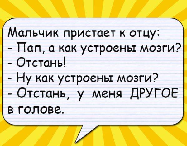Анекдоты Года Про Школу