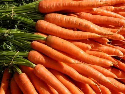 Мои секреты получения суперурожая моркови