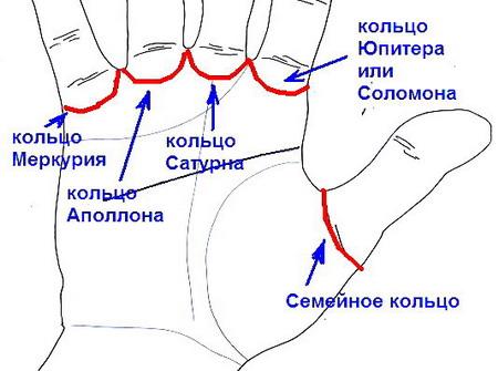 Соломоново кольцо на ладони — к худу или добру