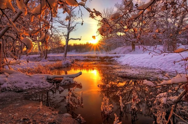 Здравствуй, русская зима!
