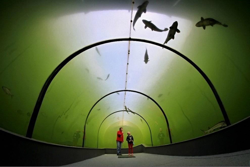 tunnel-Modra-3