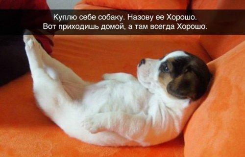 http://mtdata.ru/u5/photo1BFF/20514500065-0/original.jpg#20514500065