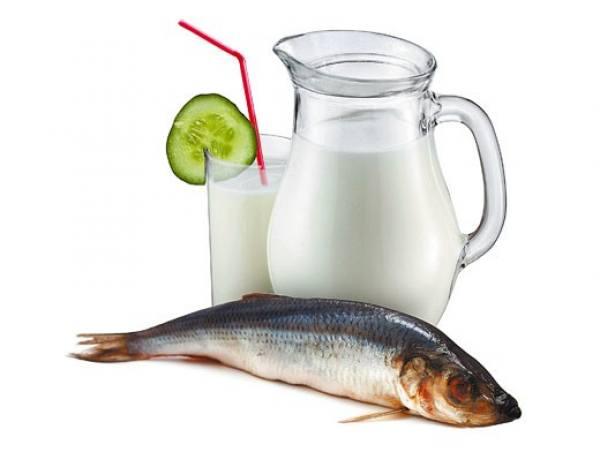 Можно ли пить молоко, заедая его селедкой законы сочетаемости
