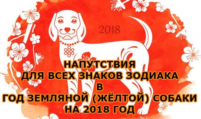 Напутствия для всех знаков зодиакав год земляной (жёлтой) собаки на 2018 год