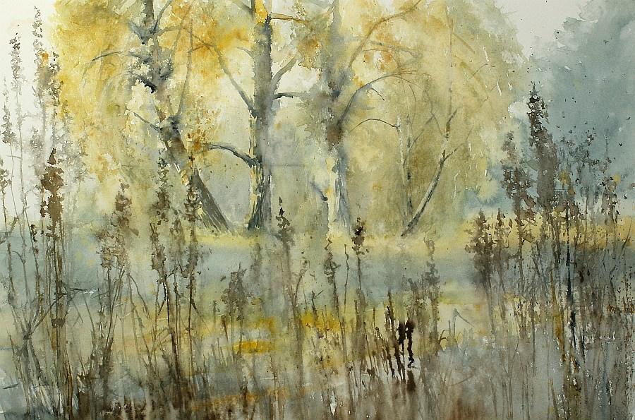 «Где-то там, в тиши лесной, стоит у речки синей дом родной…» Польская художница Jolanta Tondys