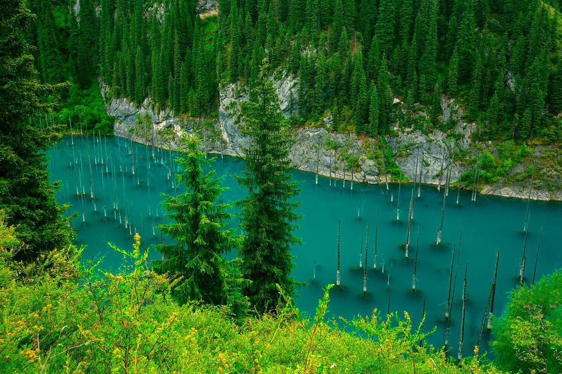 Затонувший лес, Казахстан