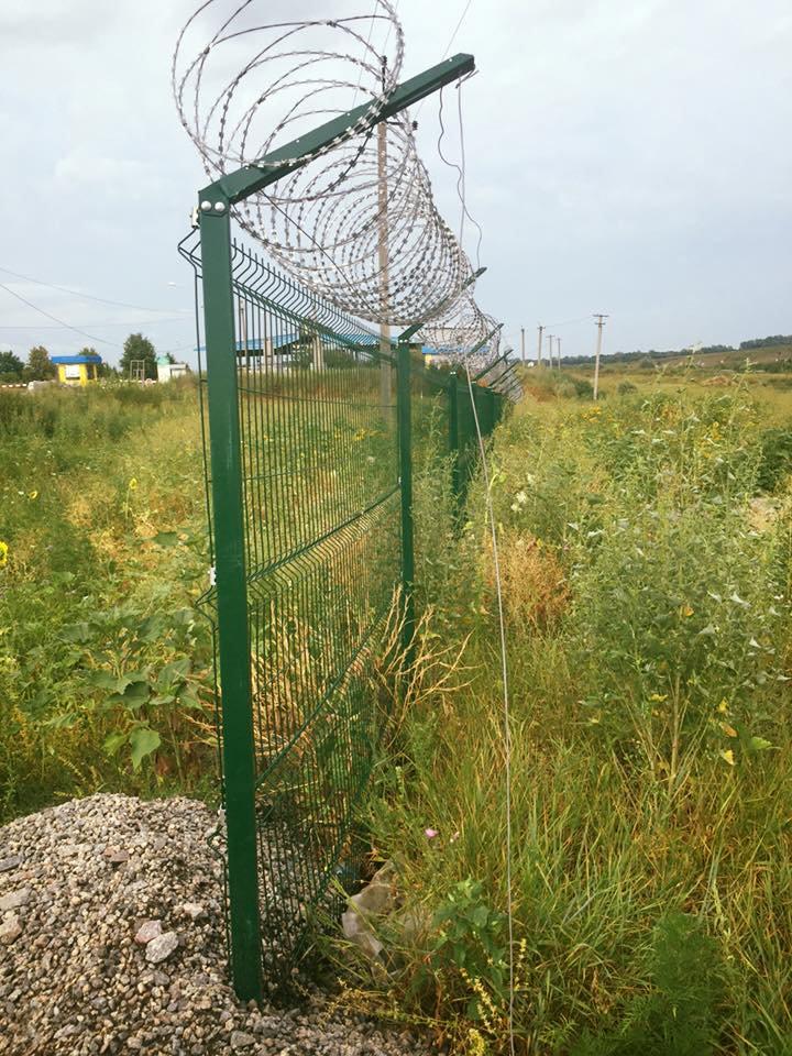 Кабаны испытали на прочность «стену» Яценюка на границе России и Украины