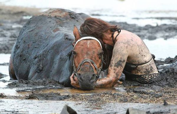 Эта невероятная женщина 3 часа не отходила от лошади, пытаясь спасти ее из смертельной ловушки