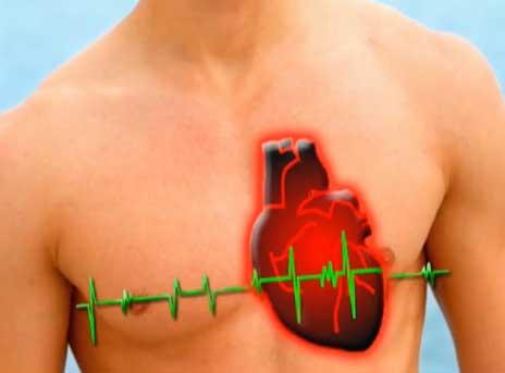Продукция NSP - высочайший потенциал для укрепления здоровья сердечно-сосудистой и нервной систем.