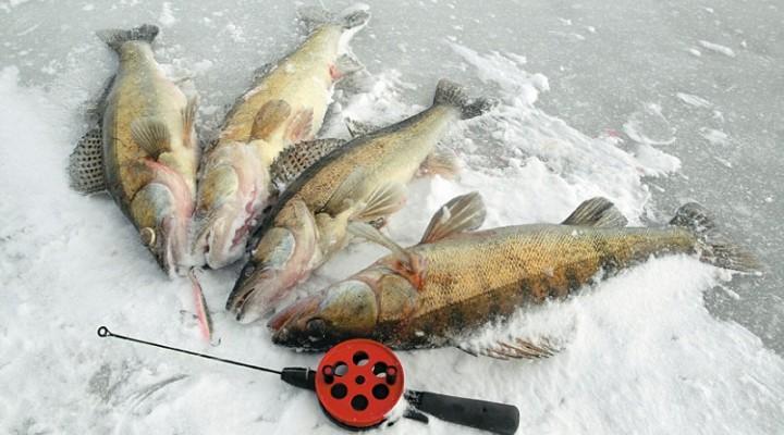 рыбалка в марте фото