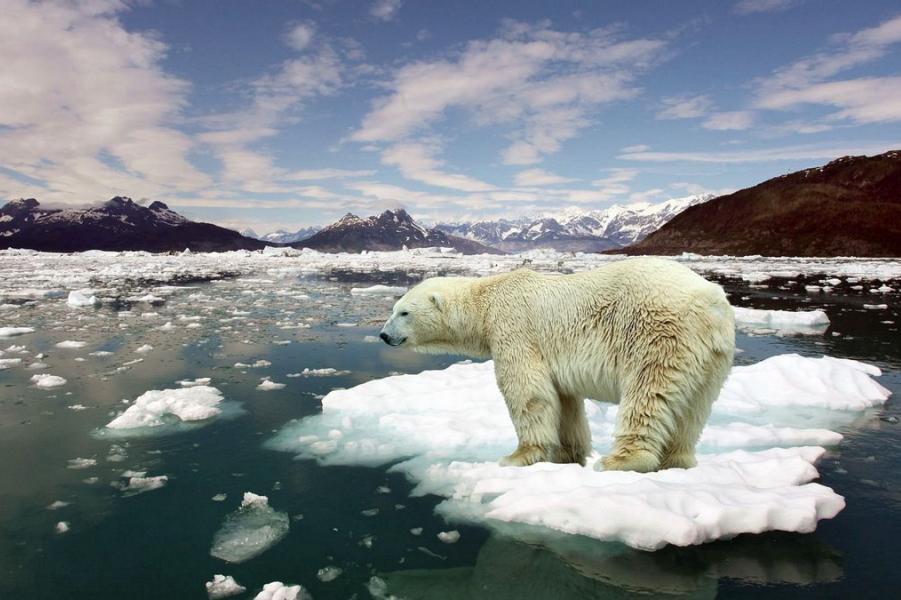 Все-таки глобальное потепление. И сделать уже ничего нельзя, поздно