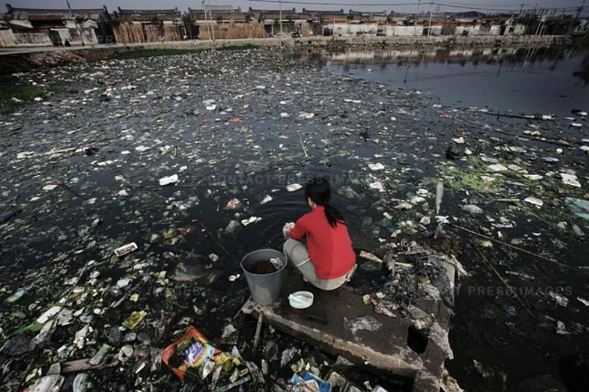 ocean dumping essay