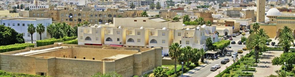МИР ВОКРУГ. Тунис: вопросы безопасности