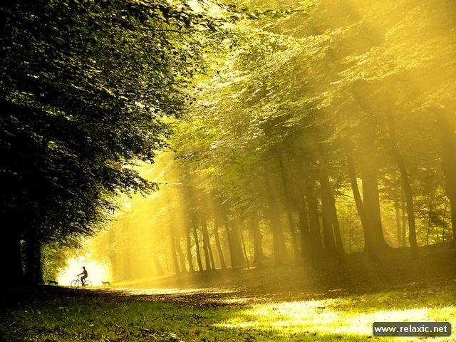 Sun_rays_006