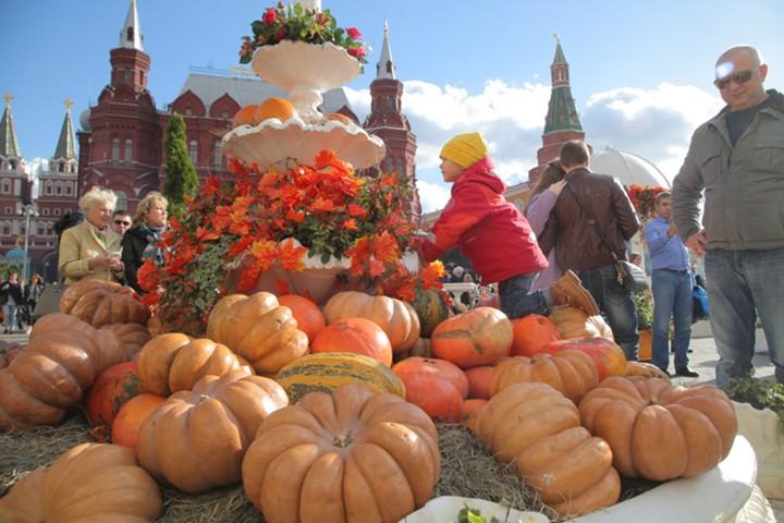 Россия увеличила экспорт продукции АПК в 2018 году на 20%