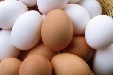 Уловки с датой выпуска, размером и мытьем при продаже яиц. Как не дать себя обмануть рис-7