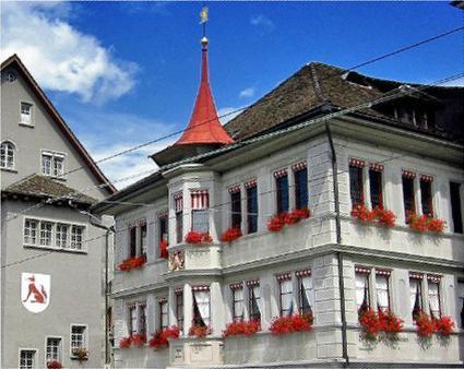 Цветы в Цюрихе