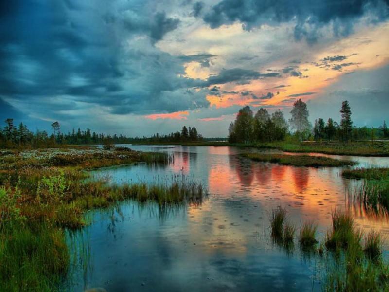 Красоты России. Большое Васюганское болото