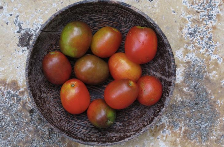 7 диковинных фруктов, которые вы не пробовали