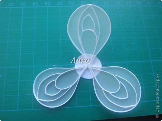 Мастер-класс Квиллинг Квиллинг на кальке MK анемоны Бумага Бумажные полосы фото 5