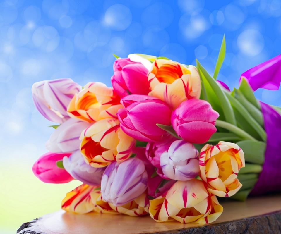 тюльпаны, букет, бутоны, пень