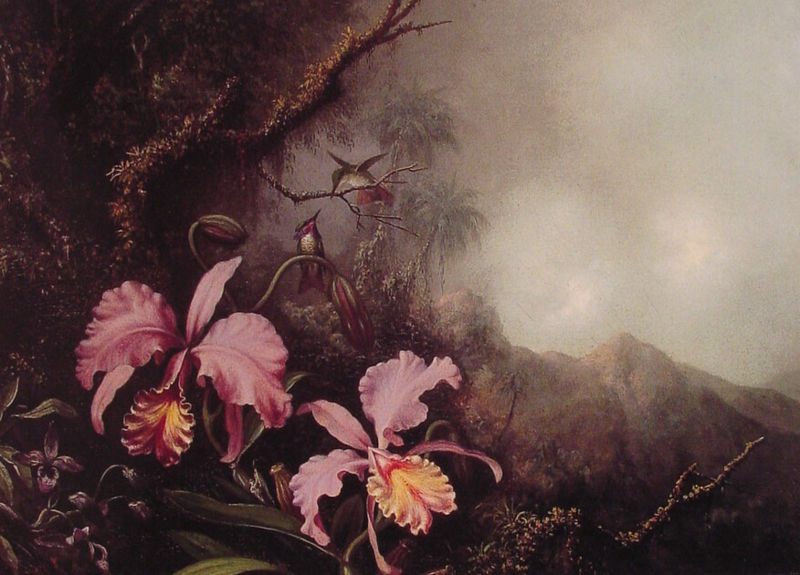 File:Martin Johnson Heade - Two Orchids in a mountain Landscape.jpg