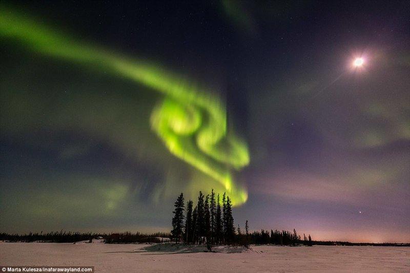 Северное Сияние над городом Йеллоунайф, на северо-западе Канады в мире, красивые фото, красивый вид, пейзажи, природа, путешествия, фото, фотографы