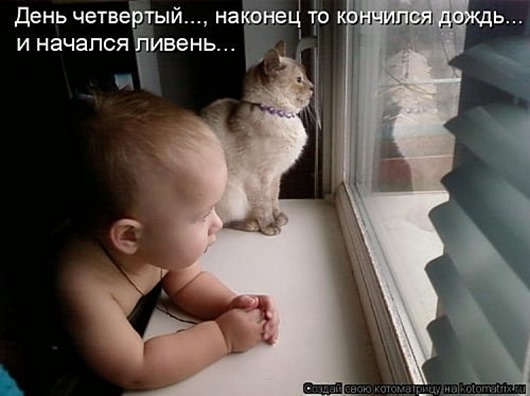 1495826254_kotomatricy-10