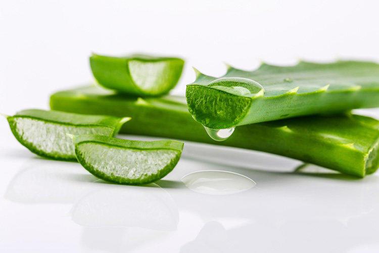 Топ-8 продуктов для исцеления вашего организма