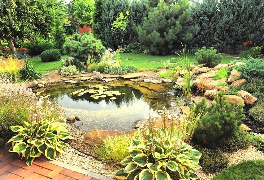 Прудик в саду дизайн