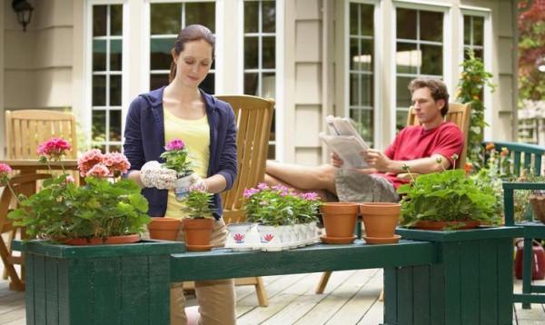 Уход за дом цветами и