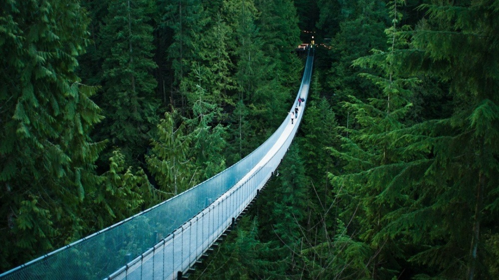25 нереальных мостов