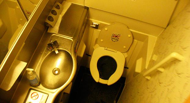 Сел по нужде: Boeing 767 совершил вынужденную посадку в Москве из-за переполненных туалетов