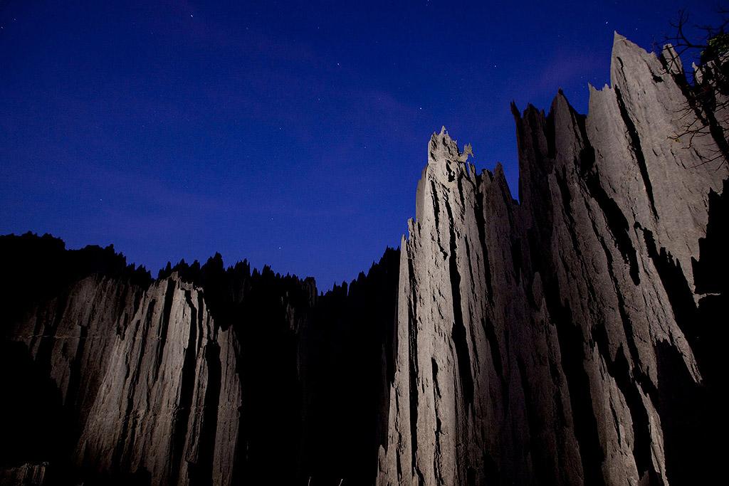 madagascar stone forest 15 Каменный лес на Мадагаскаре