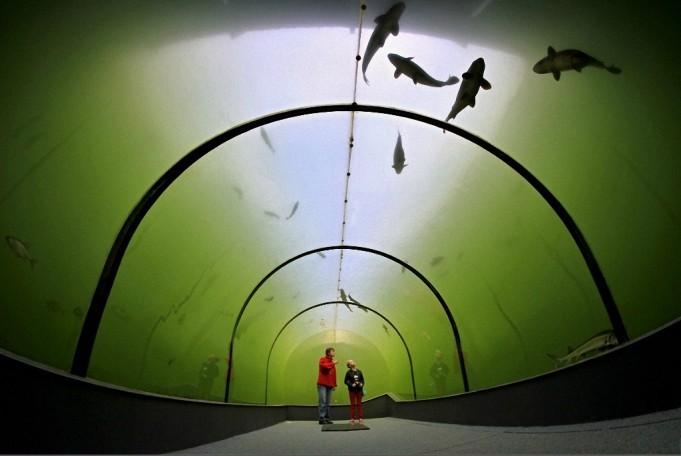 tunnel-Modra-3-681x456