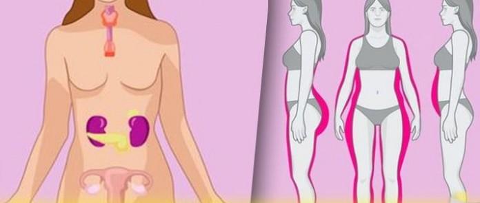 9 признаков гормонального дисбаланса после 50: как быть?