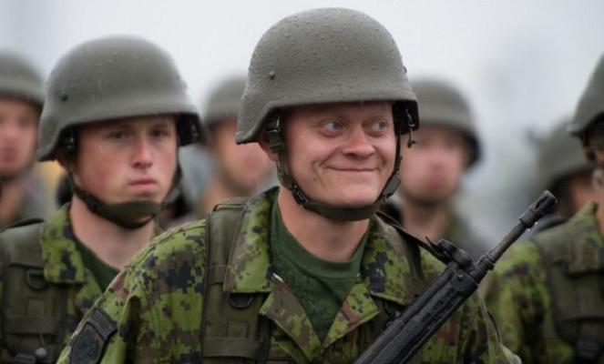В Литве местная полиция электошокерами вырубила военнослужащих НАТО