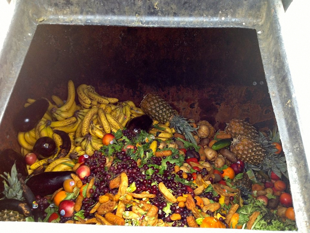 Мусорная инициатива или еда из мусорного бака