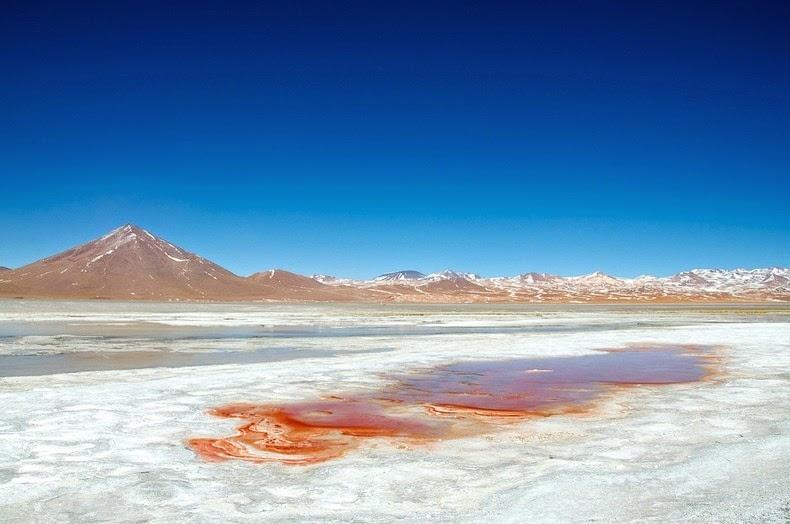 LagunaColorada05 Кровавая лагуна в Боливии